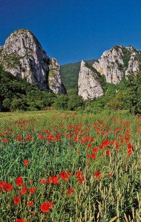 Poganovo, Σερβία: Canyon van de Jerma