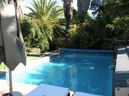 Hotel Pension Palmquell: Lädt zum Schwimmen ein
