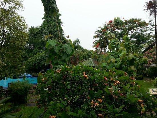 Garden Lodge : Morgens von Vögeln geweckt zu werden war super