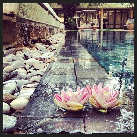 FCC Angkor : Lotus folds by the pool