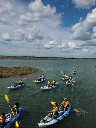 South Kayak: Navegar entre el cielo y el agua
