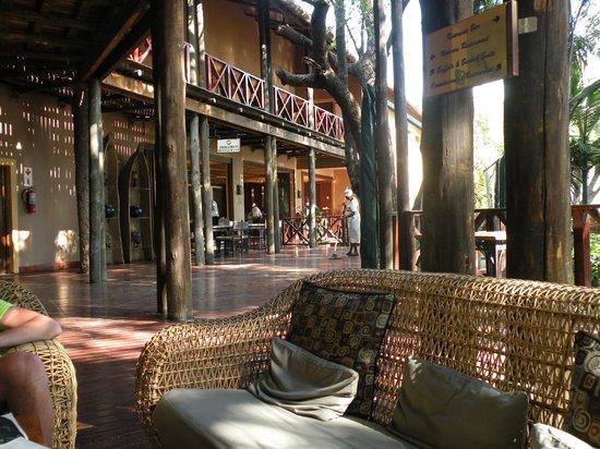 Chobe Marina Lodge: Vor der Massage