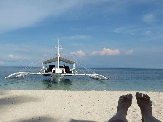 Evolution Diving Resort: Dive boat