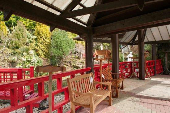 Cardwell Garden Centre Cafe