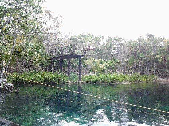 Cenote Crystal: tuffi da favola....