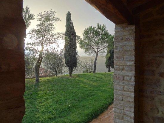 Agriturismo Il Casalino: view from the loggia