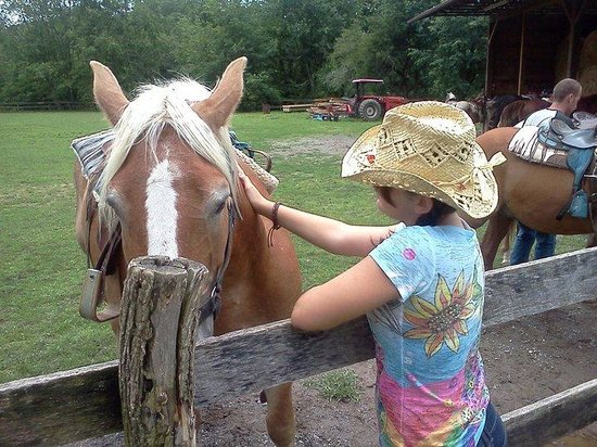 Arrowmont Stables & Cabins, LLC: My daughter with the horse she would be riding.