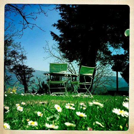 Villa Campestri Olive Oil Resort: So relaxing...