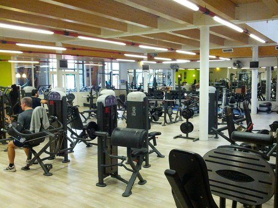 Adonis Excellior Grand Geneve: Gym City Green