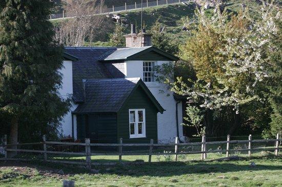 Alvie & Dalraddy Estates