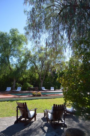 Portwine Guesthouse : Pool and Green