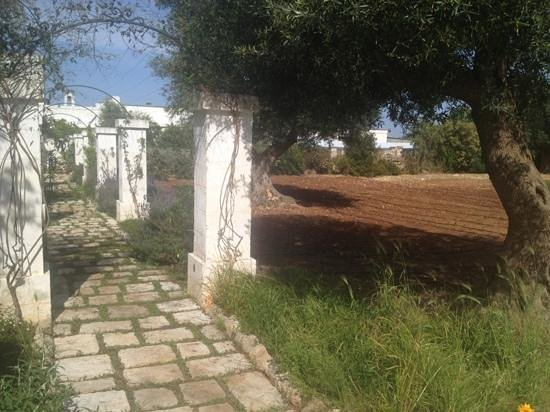 Masseria Bianca di Puglia: vegetable and herb garden for guests to pick up what they need