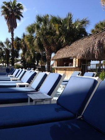 Charleston Harbor Resort & Marina: the hut