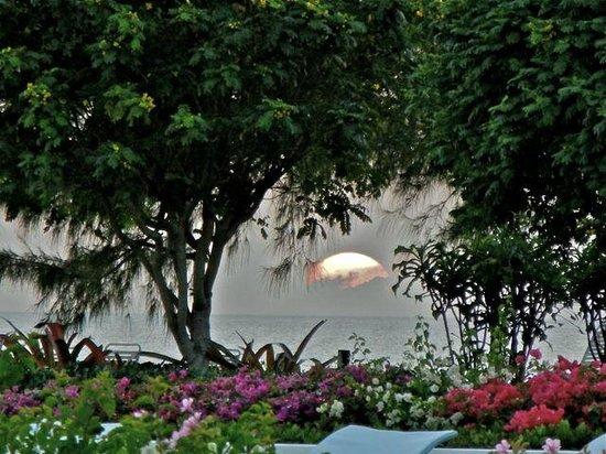 Silver Sands: Looking thru SS gardens