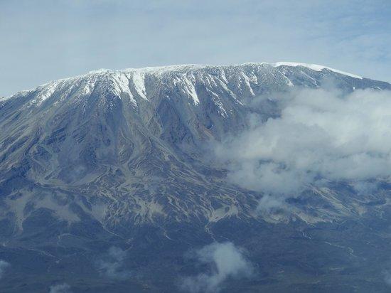 Oloshaiki Camp: Gute Sicht am Morgen auf den Kilimandscharo