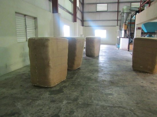 Exclusive Cottons of the Caribbean: Bales of cotton ready for shipment