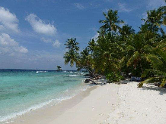 Filitheyo Island Resort: PLAGE