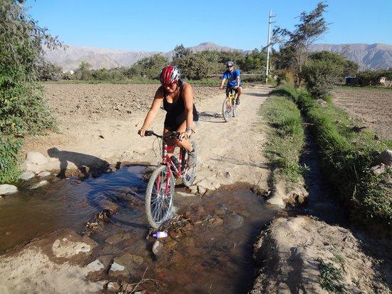 Jat Peru Adventures: Biking ride nasca