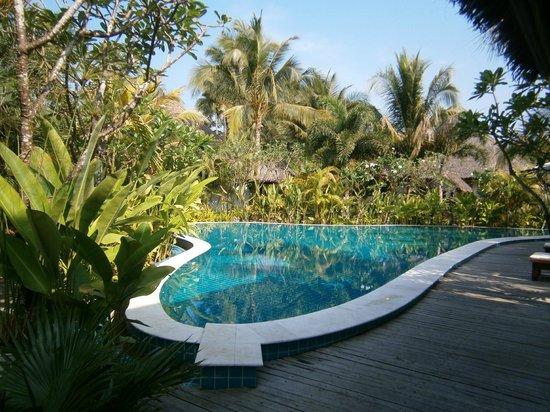 Kleiner Pool kleiner aber feiner pool picture of ngapali bay villas spa