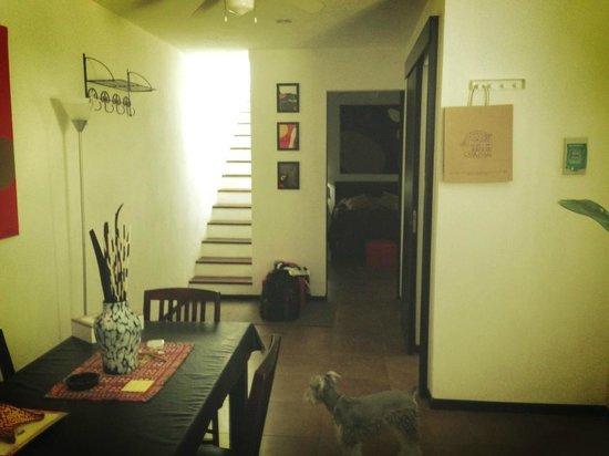 Casa Naaj Apartments: Mi perro en el apartamento