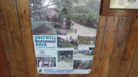 Holywell Park : Ranger Station Poster