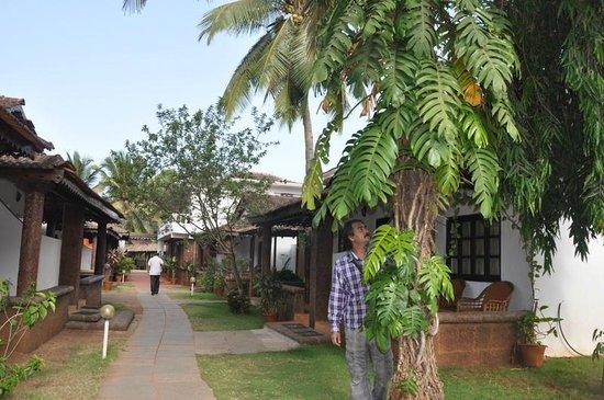 Silver Sands Holiday Village: Resort
