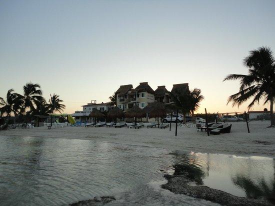 Hotel Arenas: Area de playa del hotel