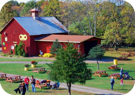 Chantilly, VA: Our beautiful red barn can be yours to rent for a group party!
