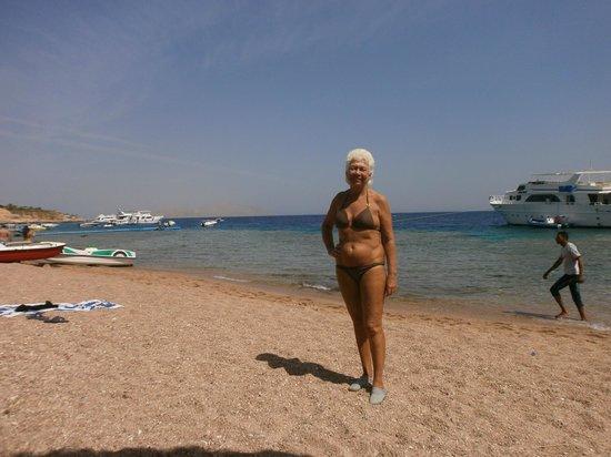 Palmyra Resort: beach