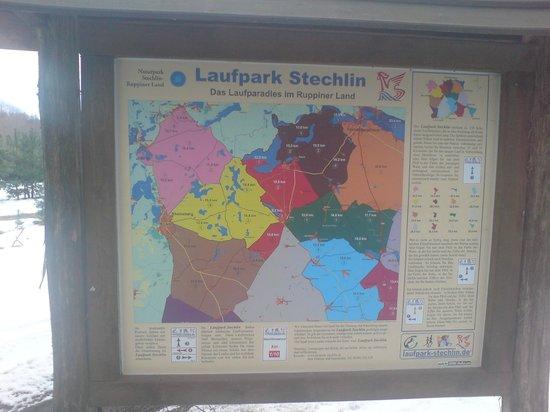 Der Seehof Rheinsberg: Wanderung nach Zechliner Hütte