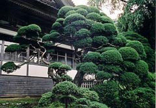 Choanji Temple