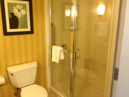 Hilton Garden Inn Pensacola Airport -Medical Center: Loved the walk in shower.  No tub to mess with!