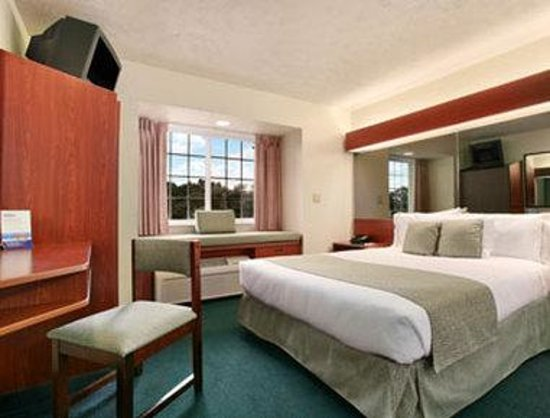 Microtel Inn & Suites by Wyndham Manistee: Guest Room With One Bed