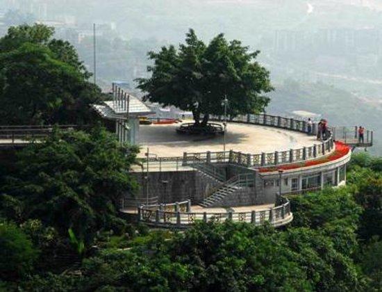 Nanshan Pine Villa Photo