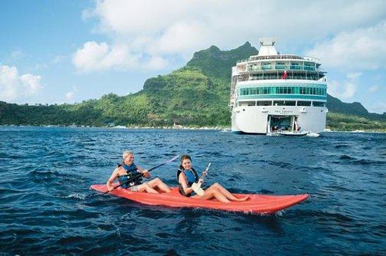 Red Sea - Dive Cruise Photo