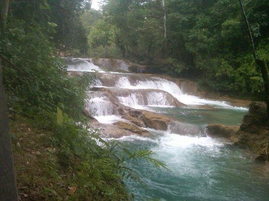 Cascate picture of cascadas de agua azul palenque for Cascadas de agua