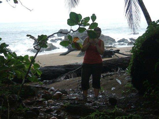 Punta Marenco Lodge: The beach