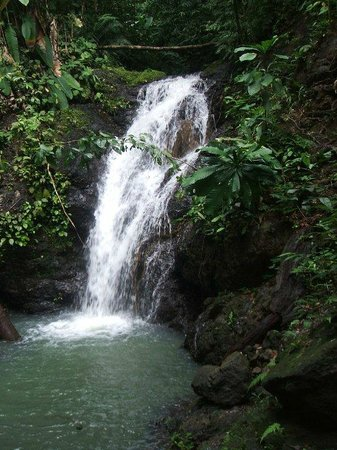 Punta Marenco Lodge: Waterfall