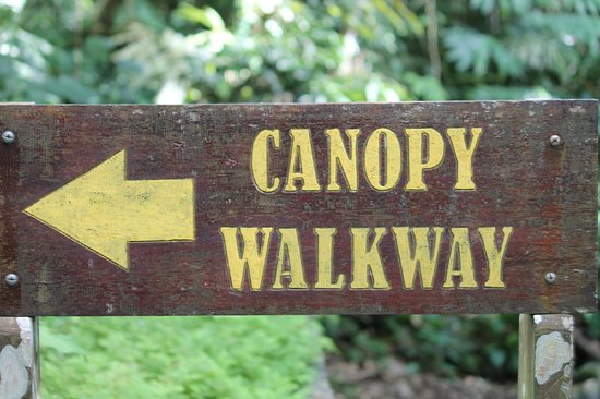 Canopy Walk: entrance sign