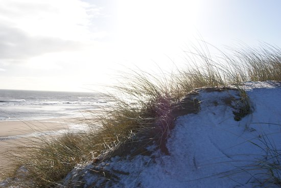 Balmedie Beach : Winter sun over the dunes.