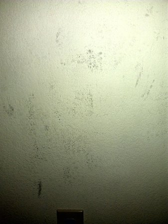 Comfort Inn & Suites: disgusting walls in our room
