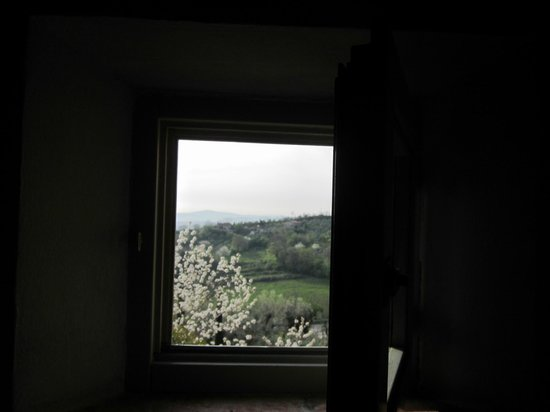 Villa Cicolina: View from one of the villa windows