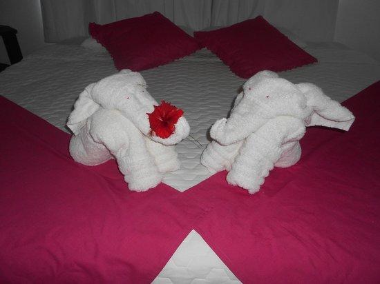 La Gran Tortuga: Hermosas figuras de toalla!