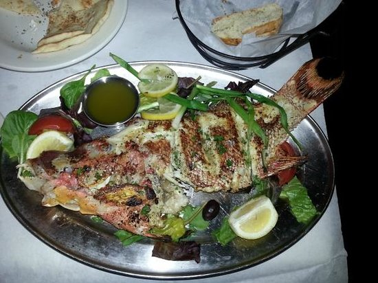 Mythos Greek Taverna: Hog Snapper (One of the specials for that day)