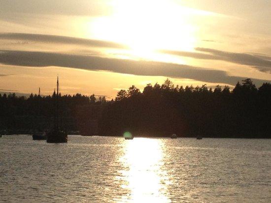 High Roller Charters: Sunset