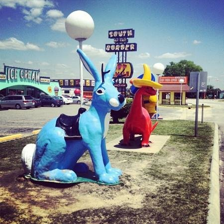 South of the Border: funny animals everywhere