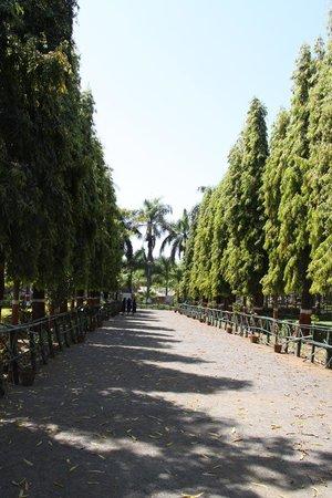 Waghai Botanical Garden