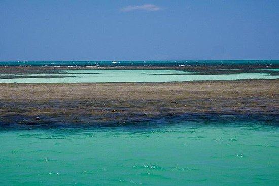 Agua transparente en las piscinas naturales de morere for Piscinas naturales argentina