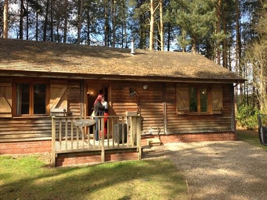 Griffon Forest Lodges: outside