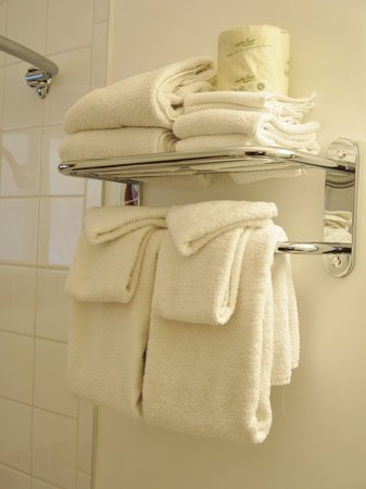 Gateway Motel: Fluffy White Towels